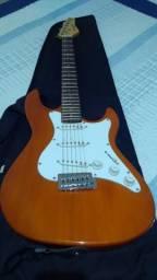 Guitarra Strinberg Strato / Madeira