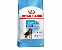 Ração Royal Canin Maxi Puppy 15 Kg