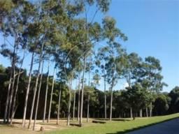 Sítio à venda com 5 dormitórios em Parque santiago, Queimados cod:805661