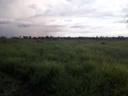 Vendo fazenda com 95% de aproveitamento