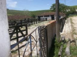 Venda-se está fazenda de 250 Alqueires no Estado do Rio de janeiro/ RJ