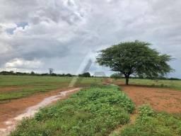 Vende-se fazenda(terreno) totalmente plana, 600 tarefas, acesso asfaltado