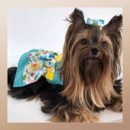 Roupa Pet - Vestido, Cachorro, Gato