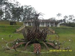 164A/Maravilhosa fazenda de 157 dentro de Ouro Preto/ Para loteamento e hotel