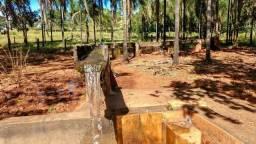 Fazenda município de Morrinhos Goiás
