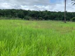 Vendo fazenda Nilo Peçanha
