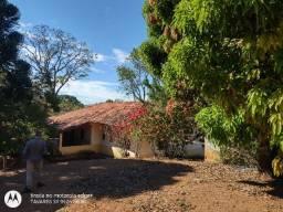 Título do anúncio: Linda Fazenda de 30 hectares com Vasto Pomar em Caeté (FG80)