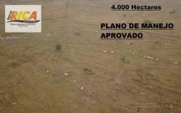 Fazenda com Plano de Manejo Aprovado a venda-Cod. FA0134