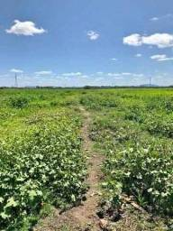 Velleda oferece área 27 hectares, com outorga e escritura, ideal p/ plantio