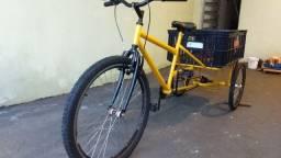 Bicicleta triciclo carga traseira com caixa