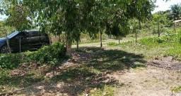 O Preço Baixou - Terreno Em Itamaracá - Pilar - Plano - Ventilado - Ótimo Lcal