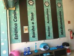 Vende-se pet shop completo na avenida t9