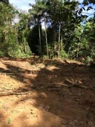 Linda Fazenda - Terra Excelente ótima para Gado