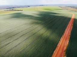 Fazenda Extra | Montividiu | 105 Alqueires | oportunidade