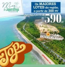 Loteamento Mar de Japaratinga Alagoas