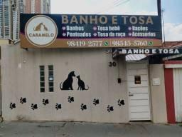 Vendo Banho e Tosa