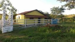 Arrendo fazendinha com 73 hectares pra recria de bezerros em Lagamar!