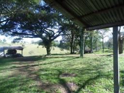 Fazenda com 60 hectares, própria criação de gado , próximo a RS 020