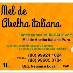 MEL de Abelha Italiana puro. Contato: (88) 9  * - Juazeiro do Norte - Ceará