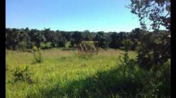 Fazenda negócio imperdível na região de Paraíso do TO
