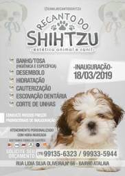 PetShop Recanto Do Shihtzu