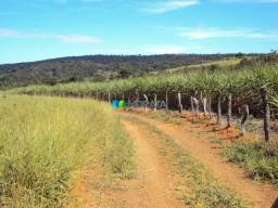 Fazenda à venda, 1 quarto, Zona Rural - Pitangui/MG