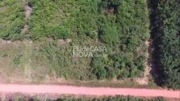 Terreno Presidente Figueiredo 100x2000 com nascentes