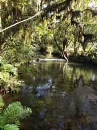 Título do anúncio: Sítio em Rio Rufino/ chácara em Rio Rufino /área rural em Urubici
