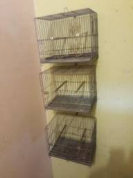 Imperdível 3 gaiolas de canários belgas