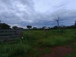 Vendo Fazenda entre Palmas e Paraíso-To