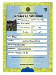 Certidão de nascimento e RG