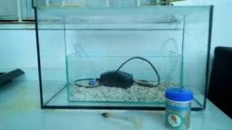 Aquario 20 litros