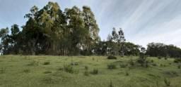Sitio em Urubici/área rural/chácara em Urubici