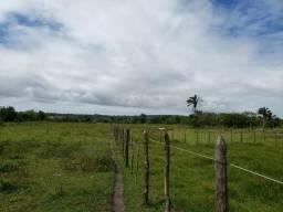 Terreno 6.5 hectares com acesso ao rio as margens br