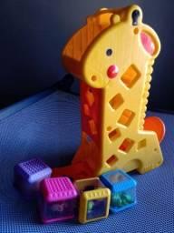 Girafa didática Fischer