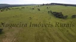 Fazenda com 97 alqueires para pecuária (Nogueira Imóveis Rurais)