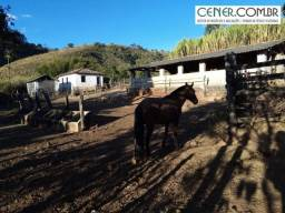 1852/Ótima fazenda de 60 ha em Piracema MG a 125 km de BH