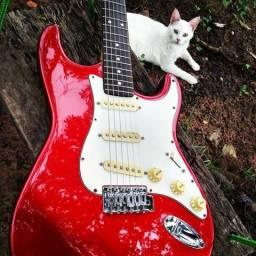 Primavera do Leste guitarra Squier Fender