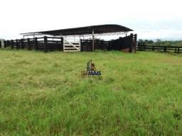 Lindo sitio a venda na zona Rural da cidade de Urupá/RO