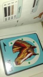 Cartão para máquina de bordar