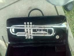 Trompete H Hoffer americana
