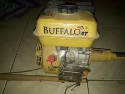 Motor de rabeta marca Buffalo