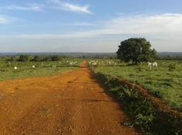 Fazenda em GOIATINS - TO, Dupla Aptidão