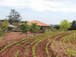 Área Rural c/ 10.44 Alqueires e 8,00 Alqueires de Plantio
