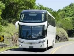 Ônibus turismo 2019