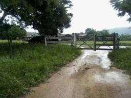 Oportunidade imperdivel Fazenda com 1004 hectares, 150 km. De Brasília, 70 km de formosa