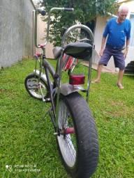 Bicicleta estilosa