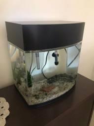 Aquario completo de vidro