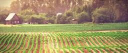 Título do anúncio: {FR} Crédito Rural Arrendamento