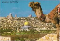 Cartão Postal - Jerusalem, the Old City - Novo